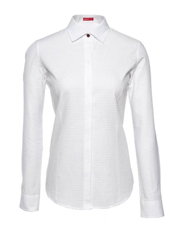 纯棉商务衬衫